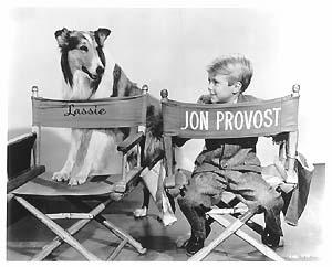 jon provost gay