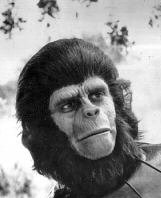 PLANET OF THE APES PHOTO GALLERY #08 James Whitmore Planet Of The Apes